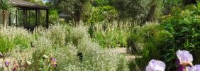 jardin-5-A